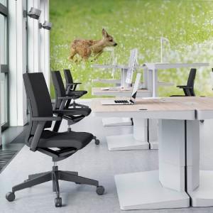 office_naadloosbehang