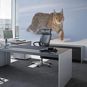office_naadloosbehang_V2