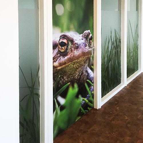 Raamdecoraties dierenbescherming