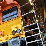 Rotterdam Rail Feeding trainwrapping Blomsma Print & Sign