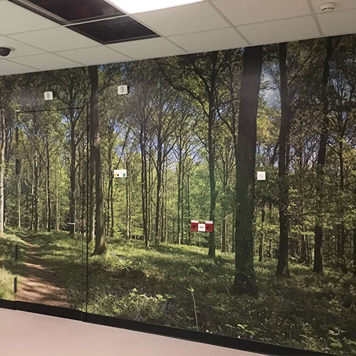 Blomsma Print & Sign wandvisual in het WKZ Utrecht PVC vrije folie 3M