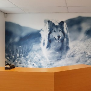 Restyling AniCura Dordrecht door het toepassen van fotopanelen, in- en externe signing door Blomsma Print & Sign