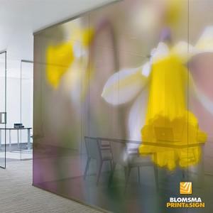 Blomsma Print & Sign levert muurvisuals in alle soorten en maten. Airtex fotobehang, akoestische panelen, gespannen doeken. Muurvisuals verhogen de sfeer in uw werkomgeving. De foto's van Any Luberti geven u de mogelijkheid uw werkruimte een unieke 'look' te geven.